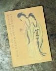 zhaozhou_notebook_beauties