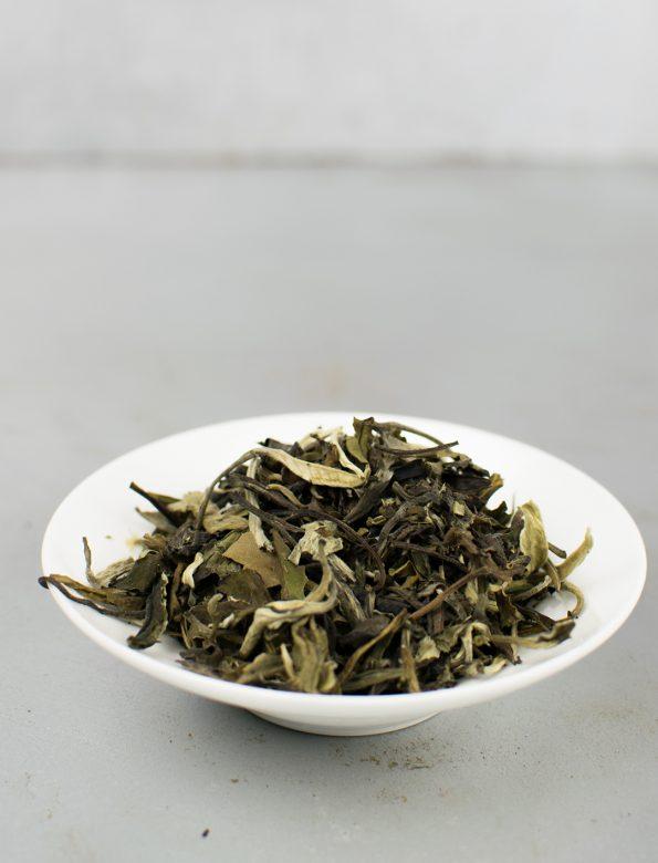 Yue Guang Bai 2015 No.203