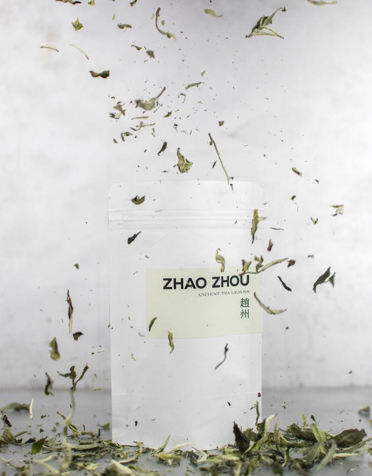 zhao_zhou_206_yue_guang_bai_2016