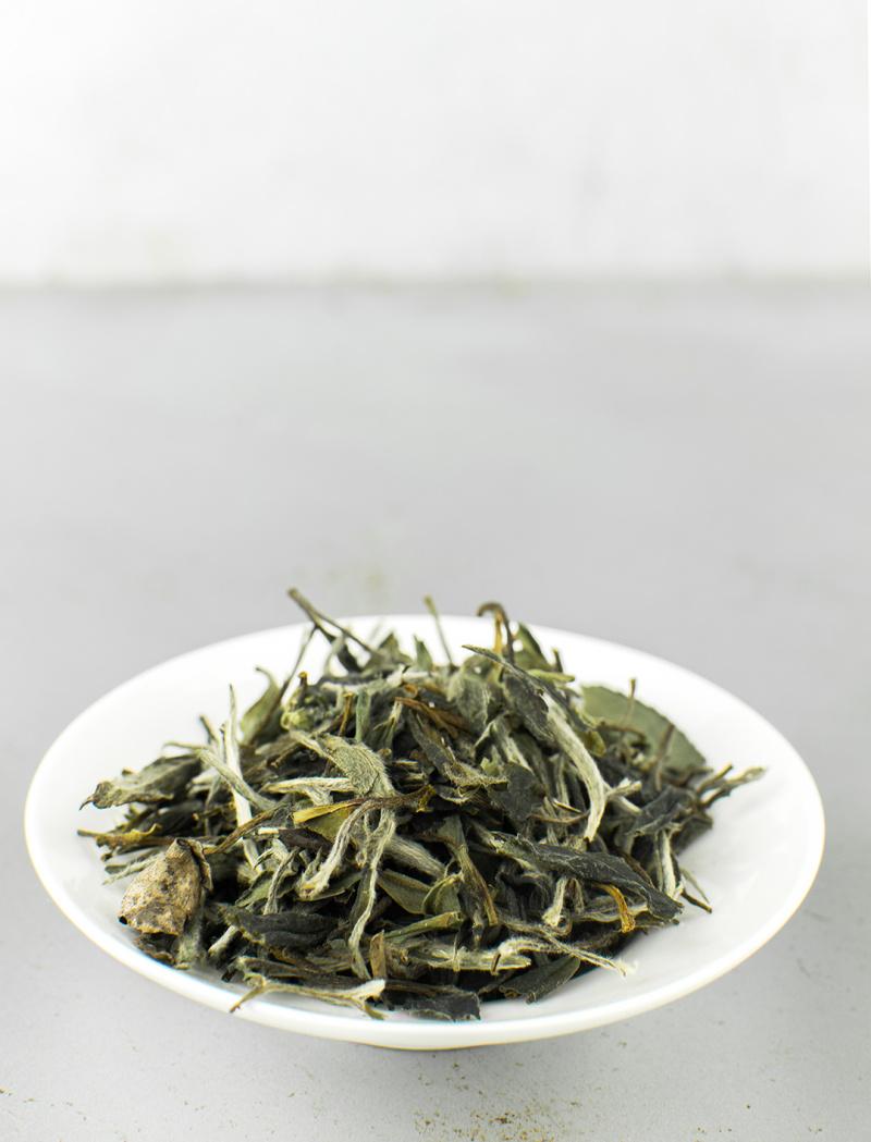 Bai Mu Dan 2016 No.211