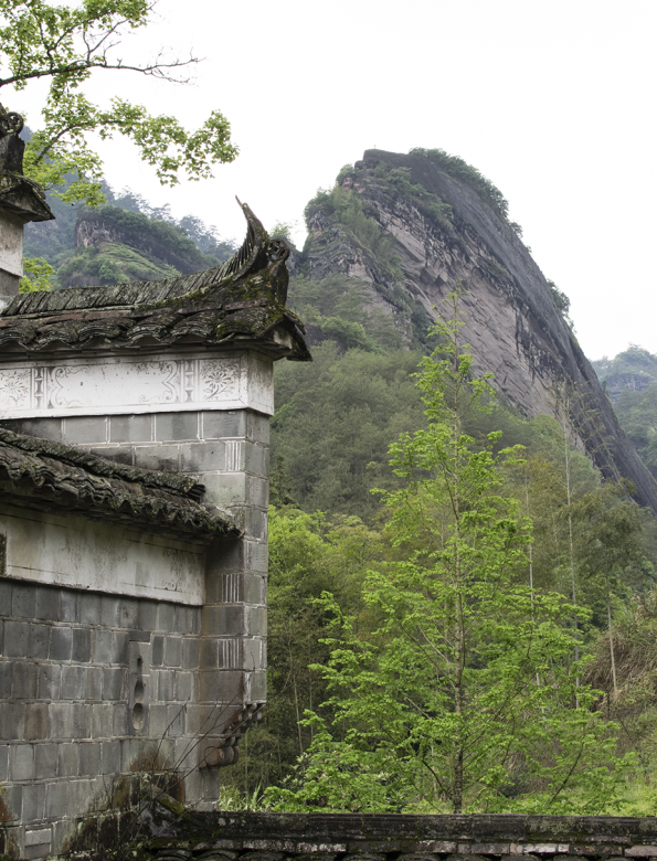 Tea Class on Wuyi rockteas – admission ticket Mar 12