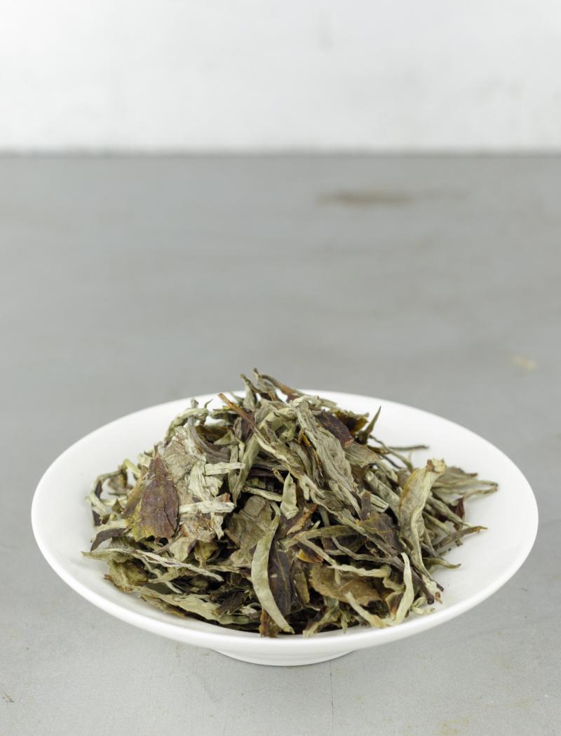 Yue Guang Bai 2018 No.213