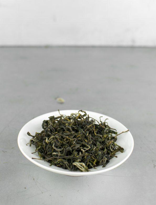Himalayan Evergreen 2018 No.338