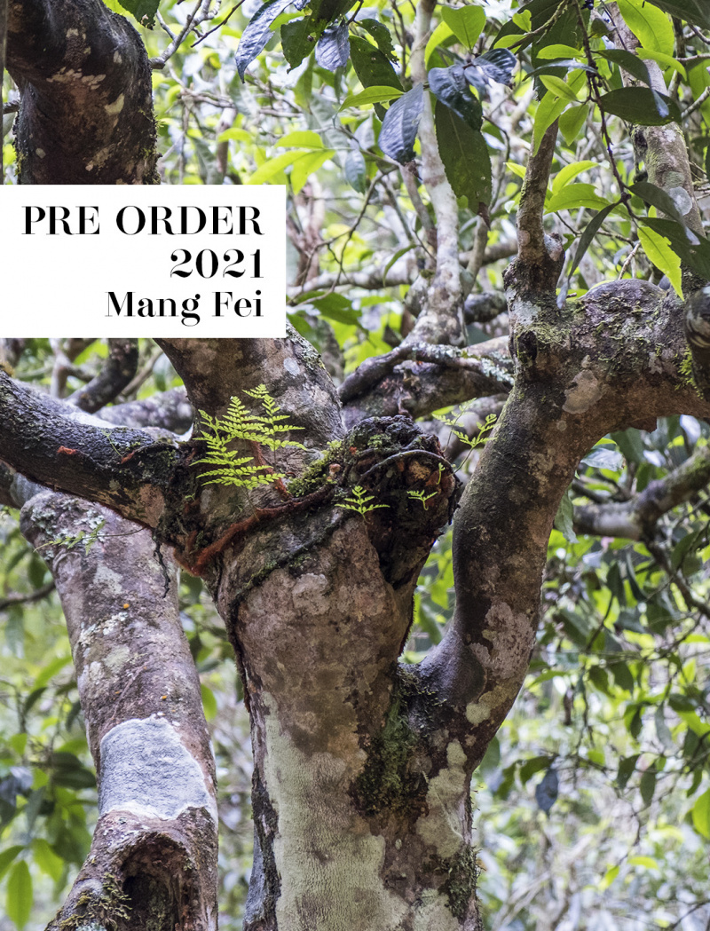 Pre order – Mang Fei 2021